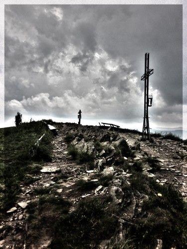 Smerek w Bieszczadach