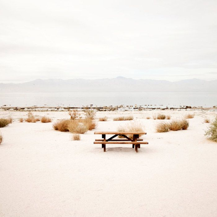 Picnic at Salton Sea (photo by Janis Nicolay of Pinecone Camp): Photos, Janis Nicolay, Desert, Company Picnics, Summer Picnics, Pinecone Camps, Salton Sea, Saltonsea, Sea Photography