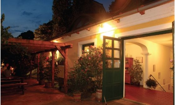 """Bujdosó Pince és Étterem / Bujdosó Winery and Restaurant _____________________________ """"Hangulatos borkostolóink alkalmával megismert borainkhoz változatos ételeinket és kemencében sült specialitásainkat egyaránt ajánljuk."""""""