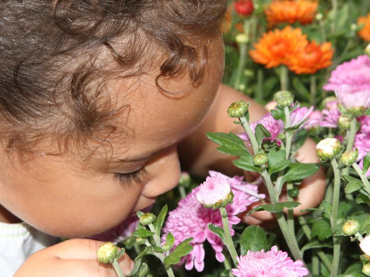 Activities that Explore Smell for 0-2 Year Olds.  Engage your child's sense of smell with these fun activities that explore the senses.