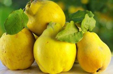Варенье из айвы - самые вкусные рецепты с фото. Как сварить на зиму айвовое варенье с орехами или лимоном
