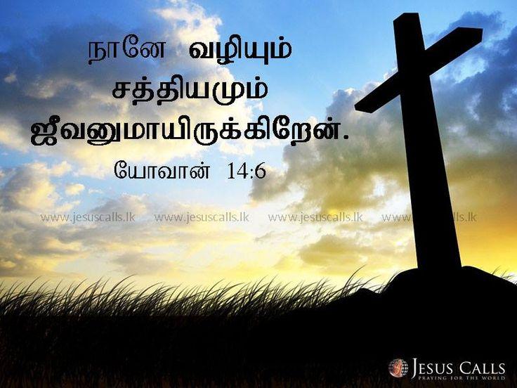 நானே வழியும் சத்தியமும் ஜீவனுமாயிருக்கிறேன். யோவான் 14:6