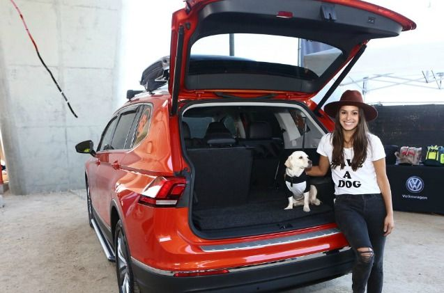Volkswagen was the life of the party at the shelter charity event in California.