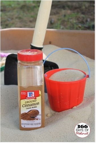 """Cinnamon in the Sandbox - It keeps the bugs away!"""""""" I knew cinnamon repelled ants... but I never thought of this! Brilliant!"""""""" Need to remember this for when we actually put sand in the kids sand box. -- I'm curious to see if this actually works."""