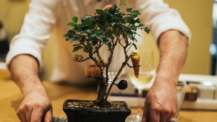 A casa que o chef Tomoaki Kanazawa deixou é agora ocupada por Paulo Morais. A mudança trouxe novidades, mas a qualidade mantém-se http://observador.pt/especiais/kanazawa-ha-mais-portugal-no-templo-da-comida-japonesa/
