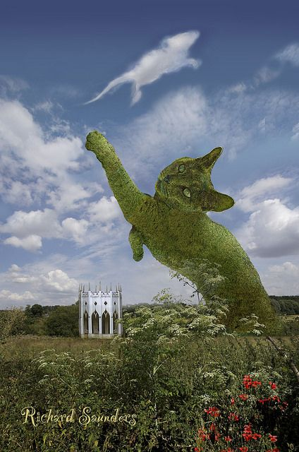 The Topiary Cat is fooled by a mouse-shaped cloud when he was very young. He's grown up now.: