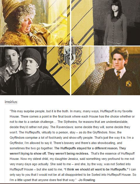 That's my Pottermore house. I found it really commendable that most if not all Hufflepuffs stayed to fight with Harry. They're not trying to prove anything. They're just plain loyal. 'Puff Pride all the way baby.