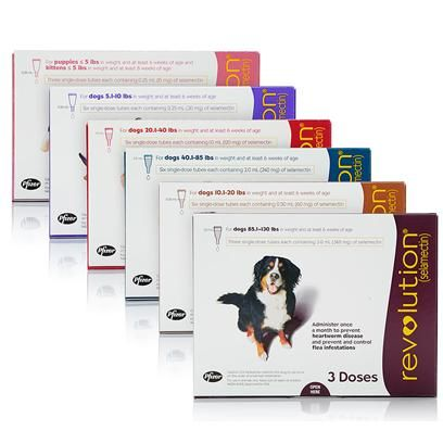 Revolution for Dogs and Cats - Revolution Flea and Heartworm Prevention | PetCareRx