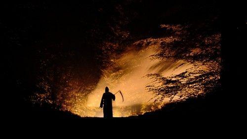 NIGHT WALK by Renaud Willems