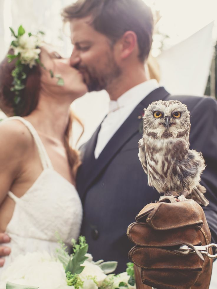 This Wedding Had a Real Owl as the Ring Bearer!... ow yes! COME ON SOMEBODY! this is soooo gonna happen #CLAIMIT