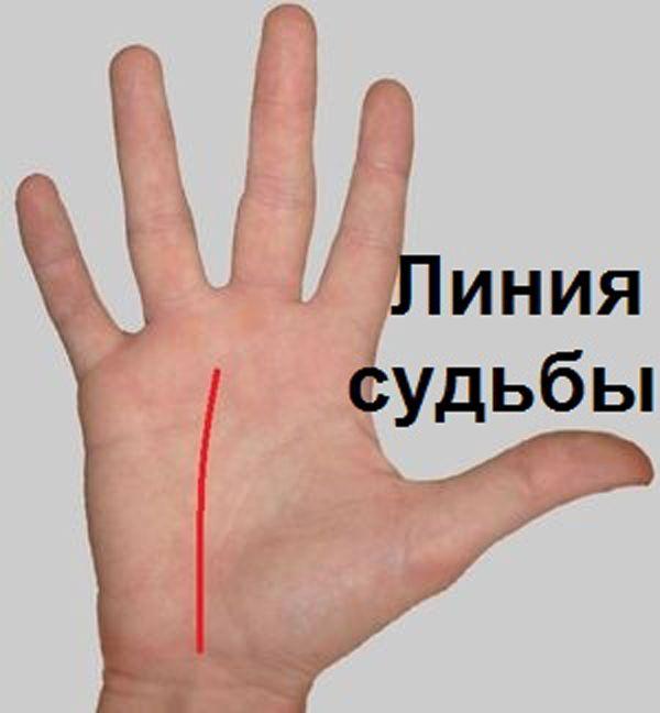 Сейчас посмотрите только на ту руку, которая является у вас доминирующей. У правши – это правая, у л...