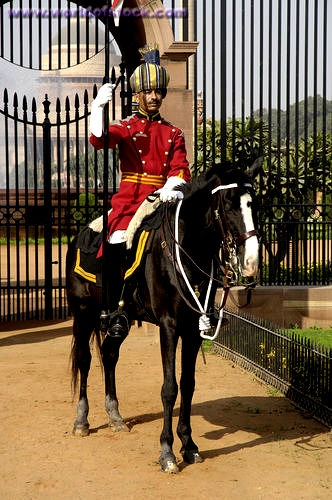 Horse Mounted Guard Outside Rashtrapati Bhavan Or Presidents Palace, designed by Sir Edwin Lutyens New Delhi, India