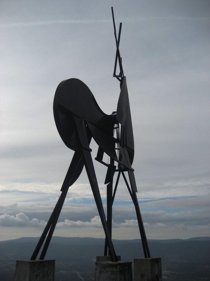 Vigio do alto... by Nuceu Alves on 500px -Cervo (visão lateral) da montanha em Vila Nova de Cerveira, Portugal