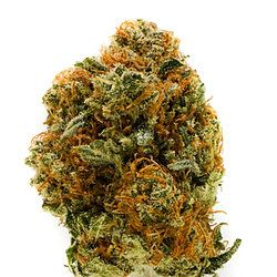 Order Weed Online at:https://www.themedicinalcannabisdispensary.net Hello, are you in search of top quality medical marijuana, tinctures, edibles, cannabis oil, weed seeds, hash oil, cbd oil and legal weeds?? why not try this out??We are a group of dedicated growers specialized at cultivating and selling just the best marijuana cannabis containing the CBN,CBD and THC ingredients. we are sellers in North America, Europe and the World,and sell out our very affordable wide collection of strains…