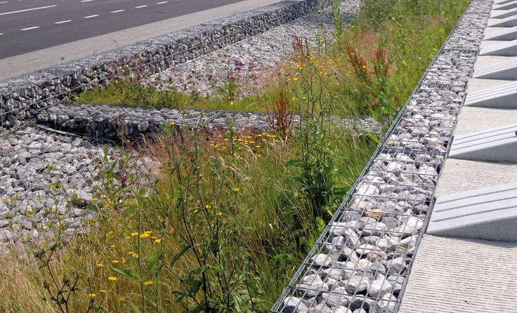 Richez Associés : un paysage pour le Grand Stade du Havre....i think that means Gabion/Planted Runoff/Catchment System