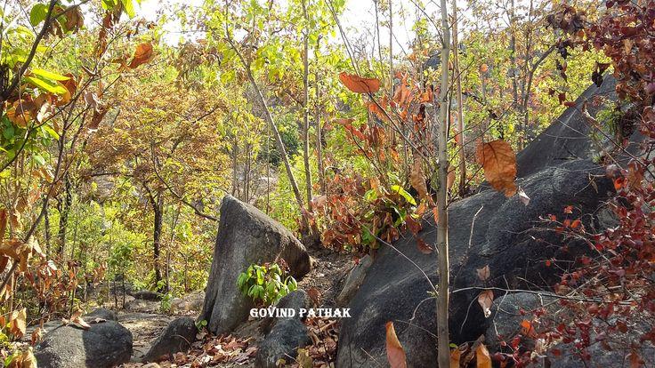 Scenic beauty of Mahuadanr wolf sanctuary, Latehar. #incredibleindia