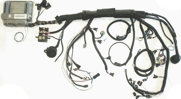 bmw e36 lsx swap wiring guide - data wiring diagram pipe-pipe-a -  pipe-pipe-a.vivarelliauto.it  vivarelliauto.it
