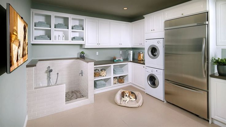Dogs and laundry. I also like the colors of the other rooms