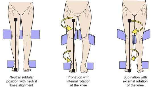 Pronation and Supination of the Knee.