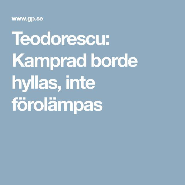 Teodorescu: Kamprad borde hyllas, inte förolämpas