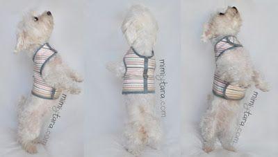 perro chaleco