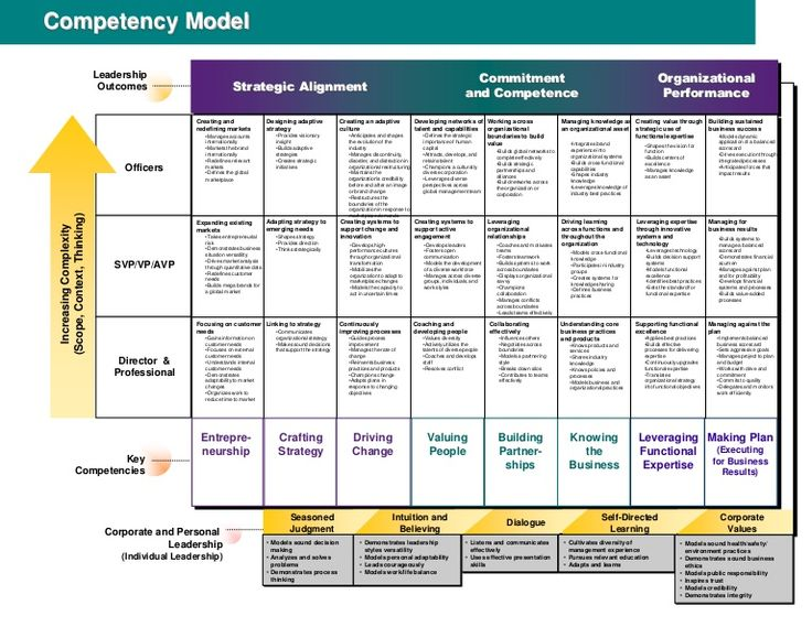 Competency Model                              Leadership                                                                                                       …