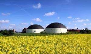 Le visuel de l'usine de méthanisation qui se fond très bien dans le décor agricole.