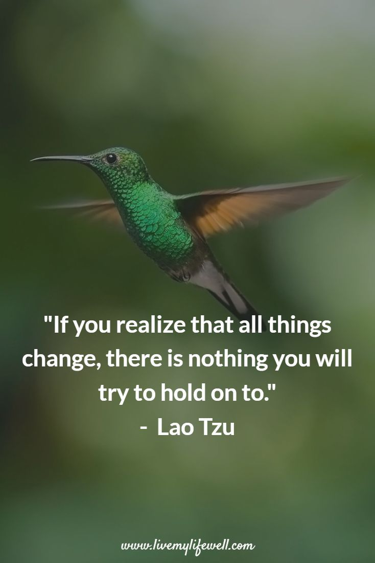 If you realize that all things change there is nothing you