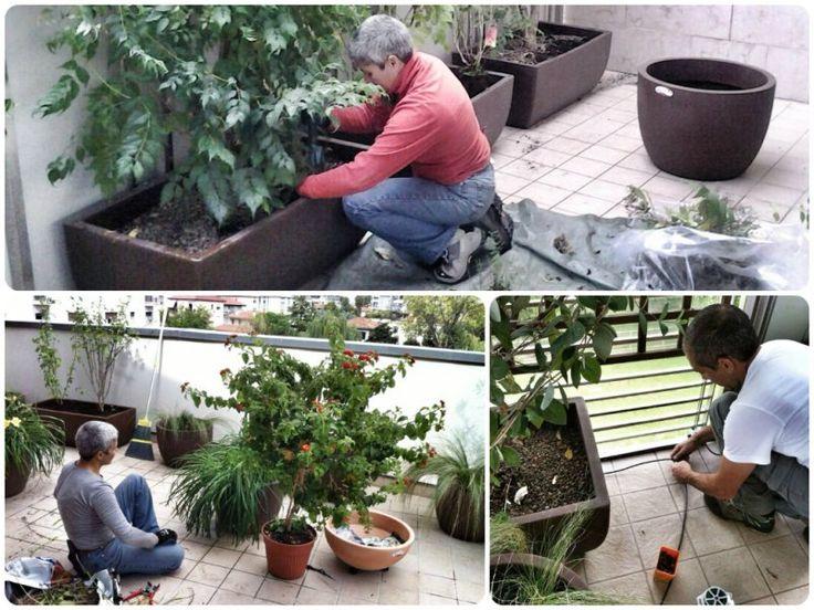 #gardenpink al lavoro per allestire painte e impianto di irrigazione di un terrazzo #agridea