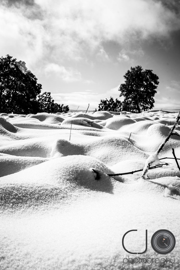 #CJO #photography #photographer #rural #country #australia #NSW #snow #cold #winter #hanging #rock #track #road #forest