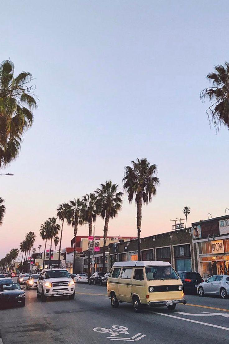abbot kinney venice beach california / vacation destination / palm trees / sunset /photography / instagram ideas
