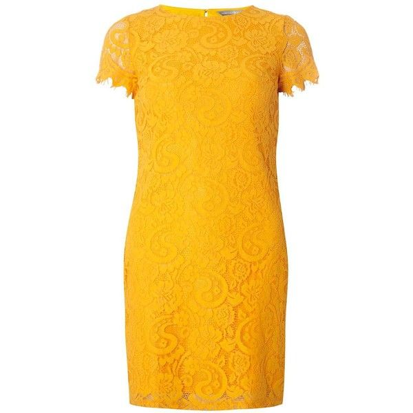 Dorothy Perkins Petite Orange Lace Shift Dress ($55) ❤ liked on Polyvore featuring dresses, orange, petite, yellow lace dress, yellow orange dress, orange lace dress, short-sleeve lace dresses and shift dresses