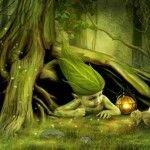 Il Regno Devico – gli spiriti della natura esistono?