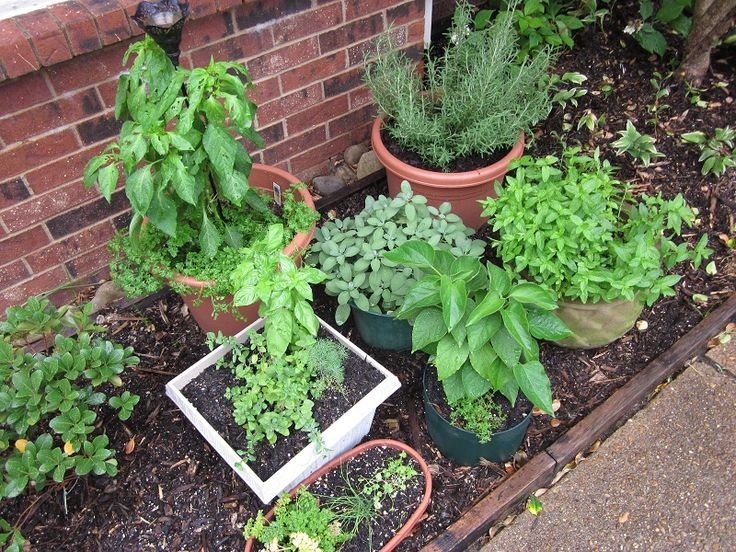 Little House in the Suburbs container herb garden
