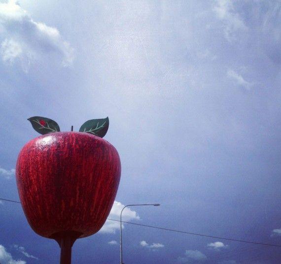 Queensland Bucket List | 6. Pick your own apples in Stanthorpe, Queensland's apple capital.