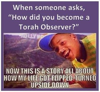 Torah Observer...lol nobody ask tho