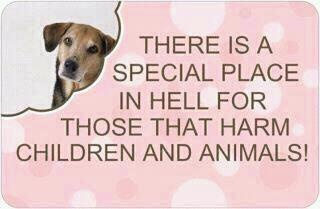 Yes, yes there is!Animal Right, Fun Recipe, Animal Shelters, Dark Places, Dogs, Fire Ants, Quotes, Special Places, Old People