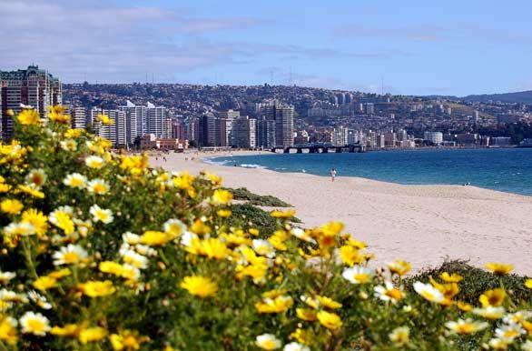 Flores, playa y ciudad...