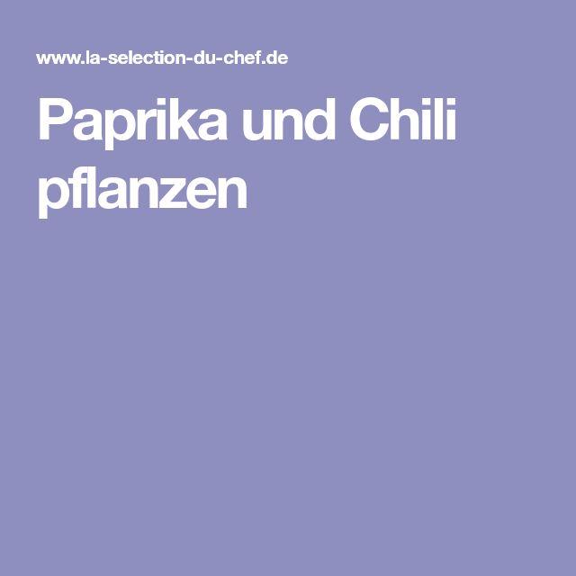Paprika und Chili pflanzen