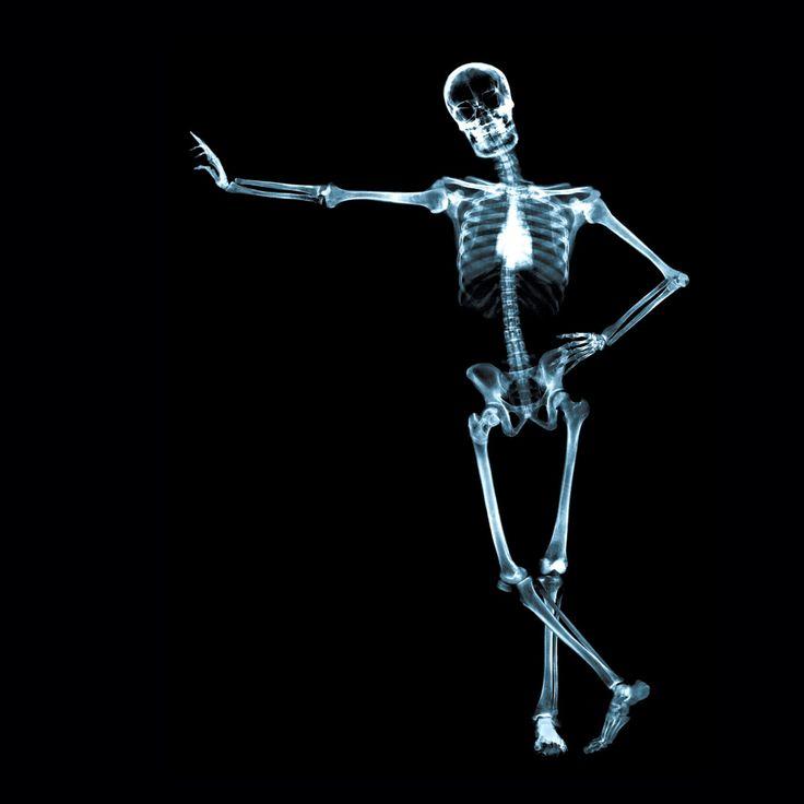 X Ray Skeleton iPad Air wallpaper