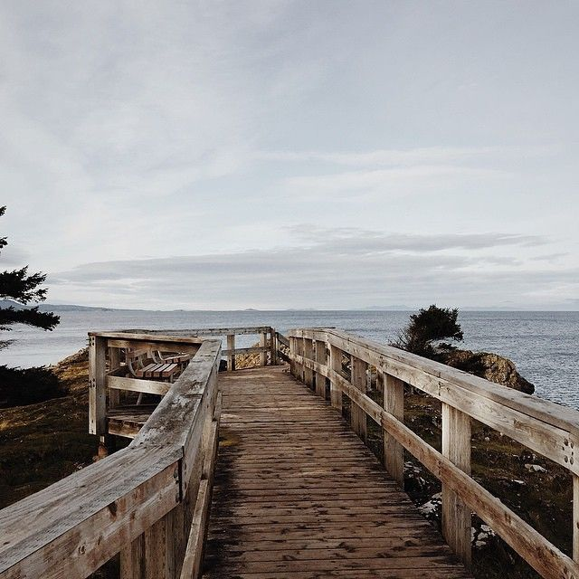 """""""Neck Point Park is a local's favourite in Nanaimo and for good reason: the park has a wooded boardwalk along the beach and the trails wind around Garry Oak groves."""": http://iconosquare.com/viewer.php#/detail/917090556686766655_231867947 (Photo: hayleymorgan1 via Instagram) #exploreBC #exploreCanada"""