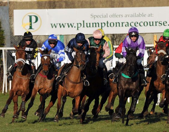 Discover details and horse racing tips from real experts. Win with key info about races in Kempton and Plumpton. Start now and place your bets!