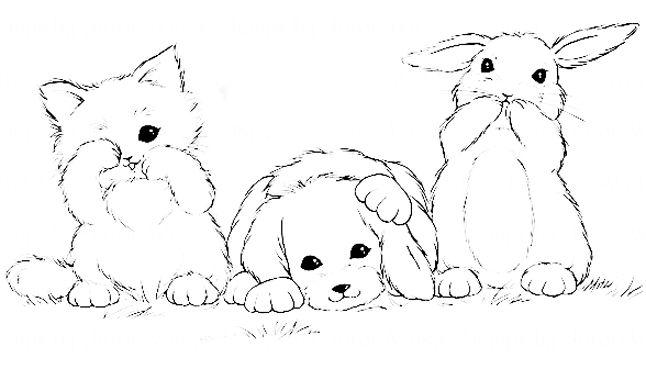 раскраски кролик щенок и котенок