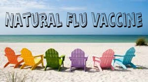 What is the flu virus