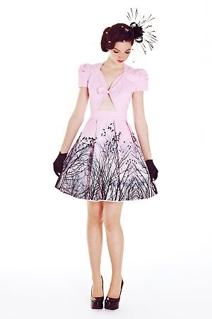 Black Caviar Dress in Pink Birds Print