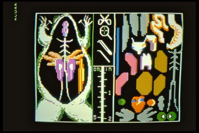 Operation Frog (1984): The main dissection screen/tray.
