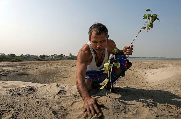 Jadav Molai Payeng The Forest Man in India who single handedly turned a barren land into a forest