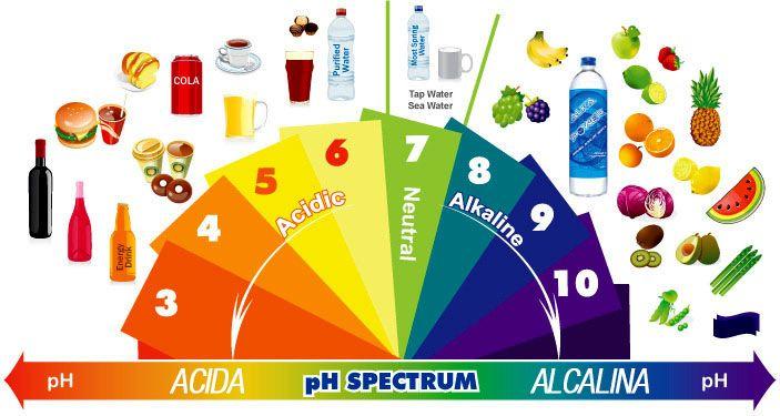 Dieta alcalina: una potente abitudine antitumorale | Rimedio Naturale