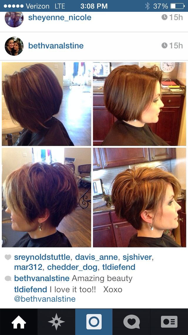 Short hair. Great cut - love it.