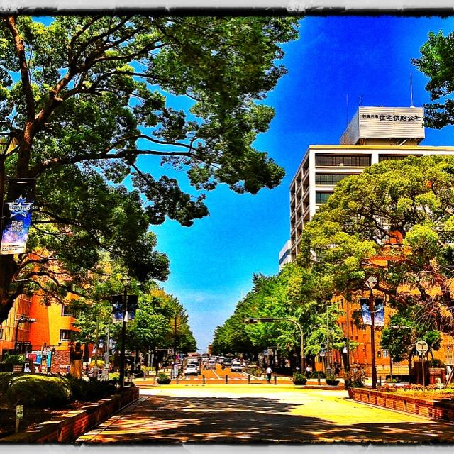 横浜公園  2012.07.04